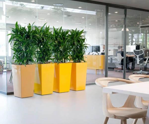 Design kantoorinrichting plantenbakken