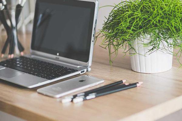 Een leuk plantje op je bureau doet wonderen