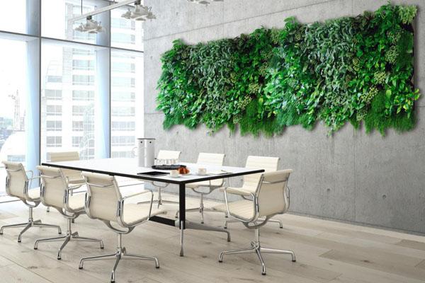 Planten verbeteren de luchtkwaliteit