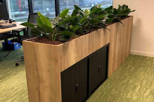 Plantenbak als scheidingswand op kantoor