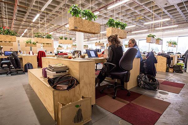 Productiviteit verhogen door planten op kantoor